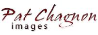Pat Chagnon images